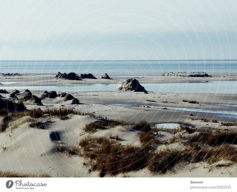 Nach dem Sturm Umwelt Natur Landschaft Sand Wasser Himmel Wolken Winter Klimawandel Wetter Gras Küste Strand Nordsee Meer Insel Erholung Ferne Unendlichkeit