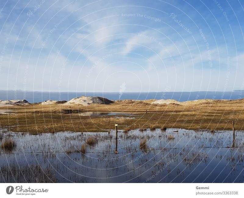 Flut in den Dünen Meer Nordsee Insel Strand Dünensee Sand Küste Schleswig-Holstein Winter Sonne Dünengras Tourismus Außenaufnahme Natur Weite blau Ruhe Idylle