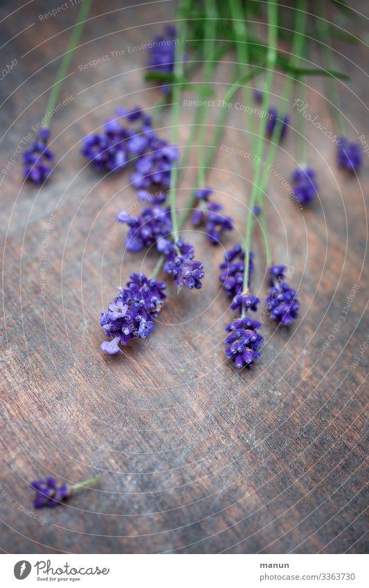 Lavendelblüten auf Holztisch Pflanze violett Heilpflanzen Duft Sommer Blüte Blume Natur Blühend gesund Farbfoto