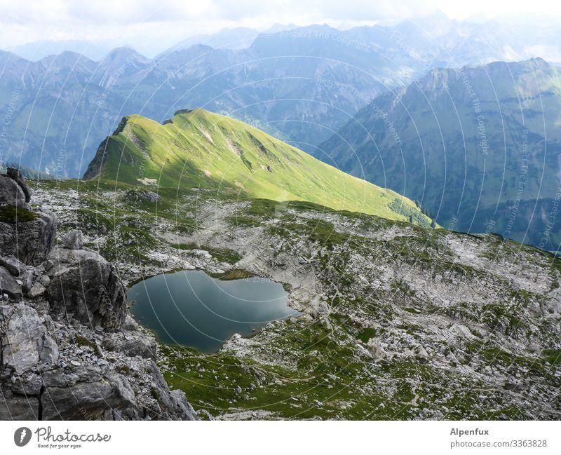 grünes Fleckchen Hügel Berge u. Gebirge Landschaft Bergsee Farbfoto Himmel Außenaufnahme Menschenleer Alpen See Tag Natur Umwelt Wasser Bergkette Sommer Wolken