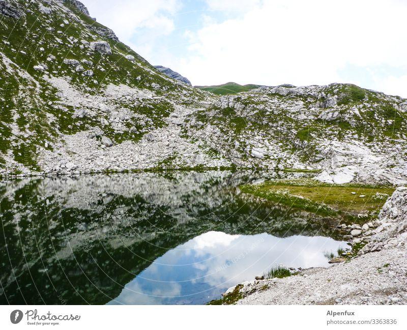 Bergsee Berge u. Gebirge See Spiegelung im Wasser Reflexion & Spiegelung Alpen Natur Außenaufnahme Landschaft Menschenleer Schönes Wetter Sommer Tag Farbfoto