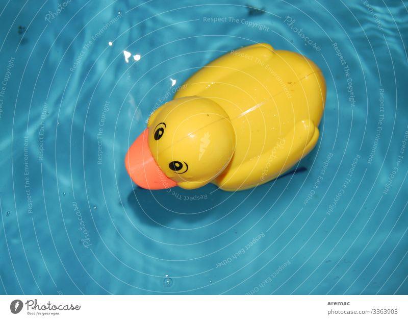 Ententeich Schwimmen & Baden blau gelb Gummi Spielzeug Wasser Badewanne Spielen Farbfoto Innenaufnahme Detailaufnahme Kunstlicht Vogelperspektive