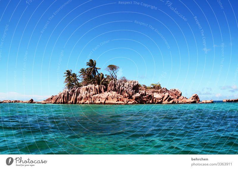 klein aber fein Sonnenlicht Kontrast Tag Menschenleer Außenaufnahme Farbfoto Felsen Praslin türkis Paradies Saint-Pierre Palme Trauminsel Seychellen Fernweh