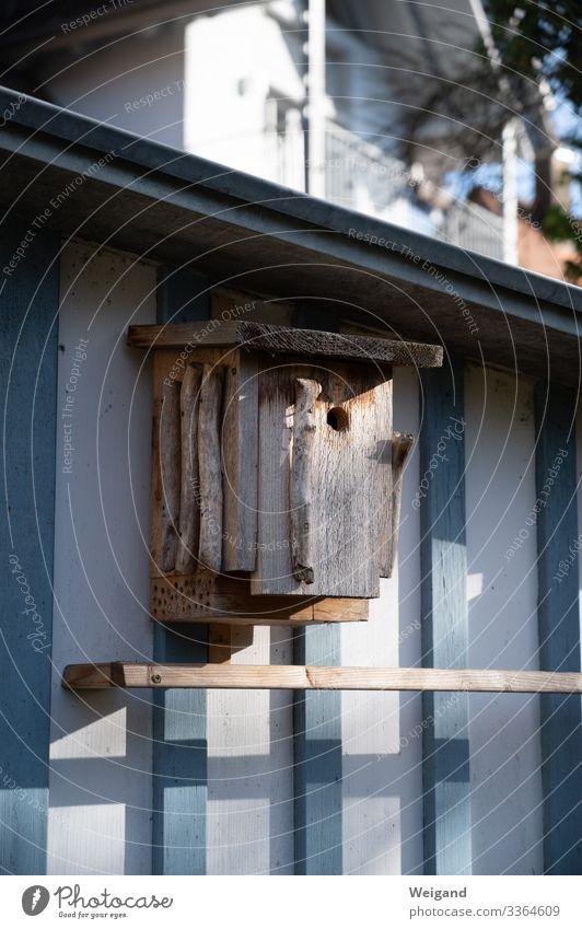 Nistkasten Freizeit & Hobby Häusliches Leben Garten Hausbau Umwelt Natur Umweltschutz Vogel Geborgenheit Futterhäuschen Farbfoto Außenaufnahme