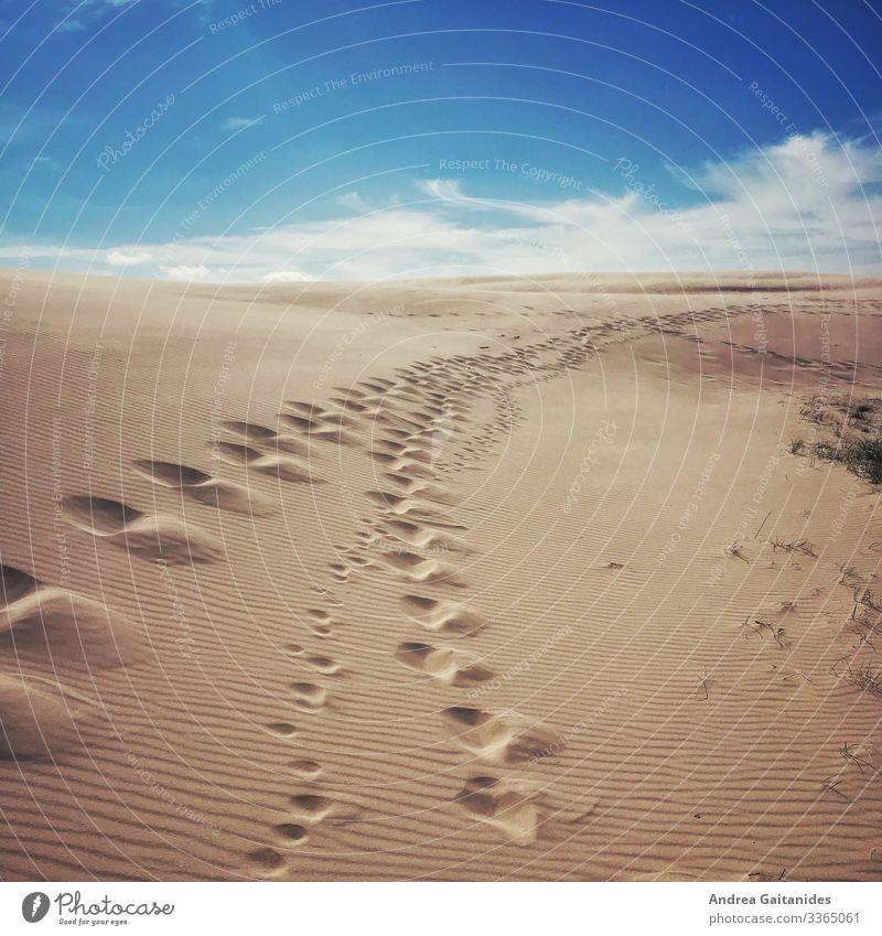 Spuren im Sand Landschaft Himmel Wolken Horizont Schönes Wetter Düne Skagen gehen fantastisch gigantisch Unendlichkeit blau braun Ferien & Urlaub & Reisen