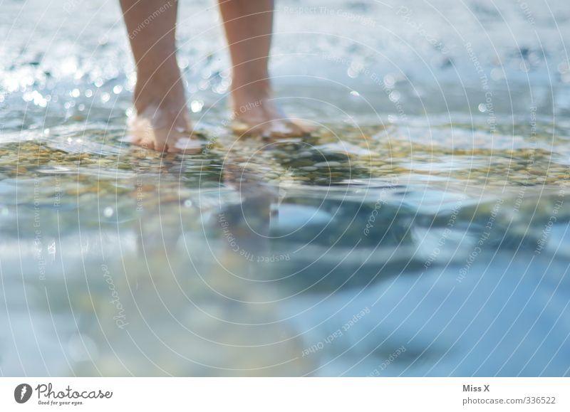Pflatschln Freizeit & Hobby Spielen Ferien & Urlaub & Reisen Sommer Sommerurlaub Sonne Strand Meer Wellen Mensch Beine Fuß 1 Schwimmen & Baden nass Badesee