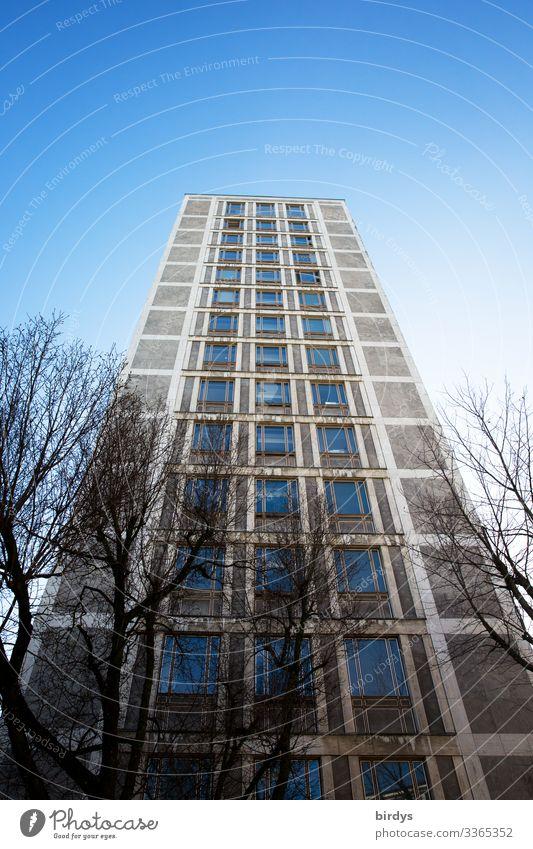 hoch hinaus Wolkenloser Himmel Winter Schönes Wetter Baum Wuppertal Hochhaus Bauwerk Architektur Fassade authentisch Stadt blau grau Farbfoto Außenaufnahme