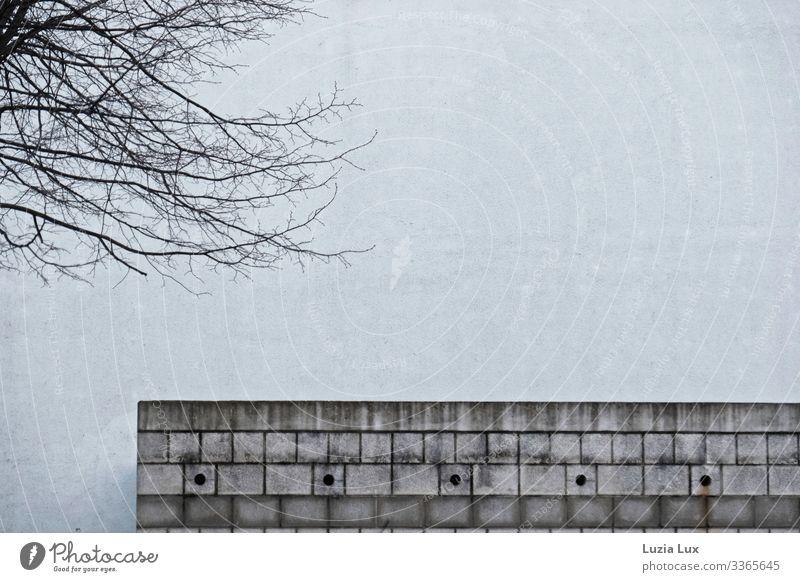 Tristesse und Anmut Lifestyle Häusliches Leben Architektur Winter Baum Stadt Mauer Wand Stein Beton kalt trist braun grau kahl Farbfoto Gedeckte Farben