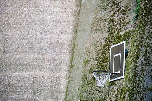Baketball Lifestyle Freizeit & Hobby Spielen Basketball Netz Sport Ballsport Moos Stadt Gebäude Mauer Wand Beton Coolness oben braun grün Farbfoto