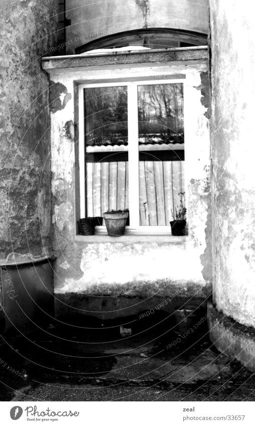 ::.. windows 3.1 ..:: alt Fenster Architektur Häusliches Leben verstecken Blumentopf Industrielandschaft