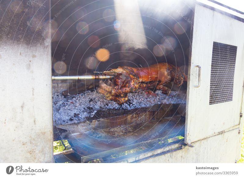 Traditionelles Balkengericht - ganzes Ferkel auf dem offenen Feuer gegrillt. Fleisch Abendessen Restaurant Tier lecker Spanferkel Hausschwein Säugling gebraten