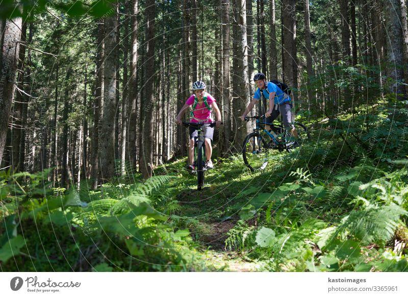 Aktives, sportliches Paar fährt Mountainbike auf Waldwegen . Lifestyle Freude Glück schön Erholung Freizeit & Hobby Abenteuer Sommer Berge u. Gebirge Sport