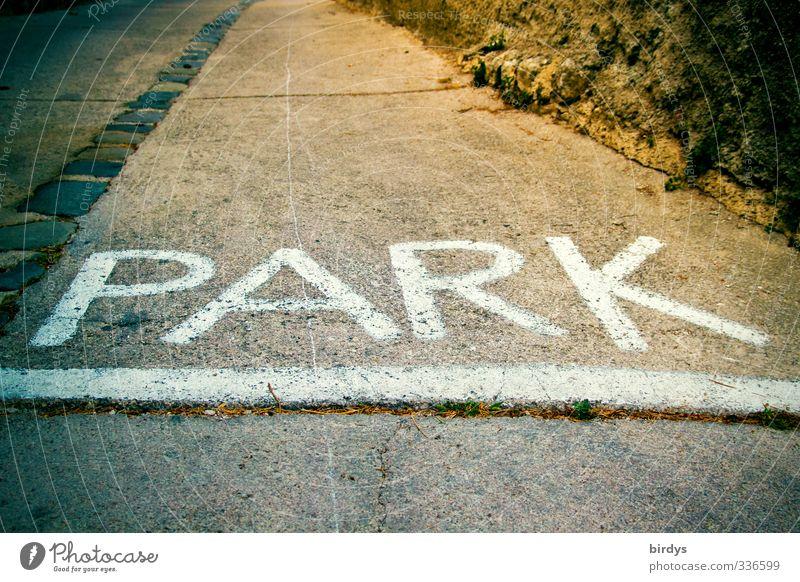 Parklane Straße Schriftzeichen Schilder & Markierungen Hinweisschild Warnschild leuchten groß Beginn Freizeit & Hobby Großbuchstabe Farbfoto Gedeckte Farben