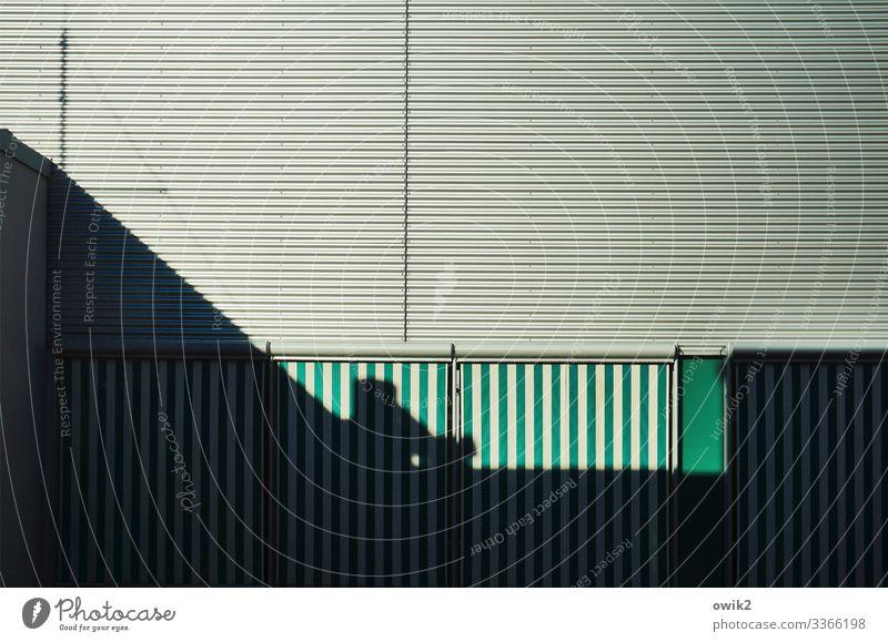 Hinter den Linien Fassade Vorhang Lamellenjalousie Stoff Metall Stadt grün schwarz weiß Ordnungsliebe bescheiden Schutz Sicherheit Sachlichkeit unpersönlich