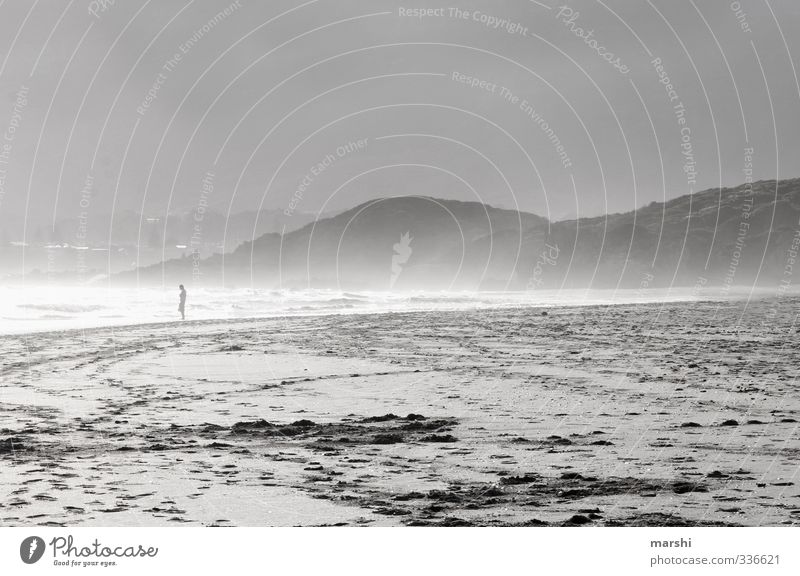 Keurboomstrand Mensch Natur Sommer Sonne Meer Landschaft ruhig Tier Strand Ferne Berge u. Gebirge Herbst Küste Reisefotografie Sand Horizont