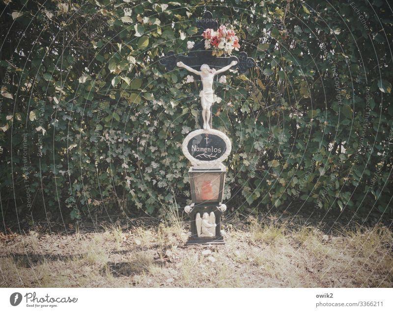 Unvergessen Pflanze Sträucher Rose Hecke Blumenstrauß Friedhof Grab Grabschmuck Kruzifix Schriftzeichen anonym Jesus Christus Christliches Kreuz Wien alt
