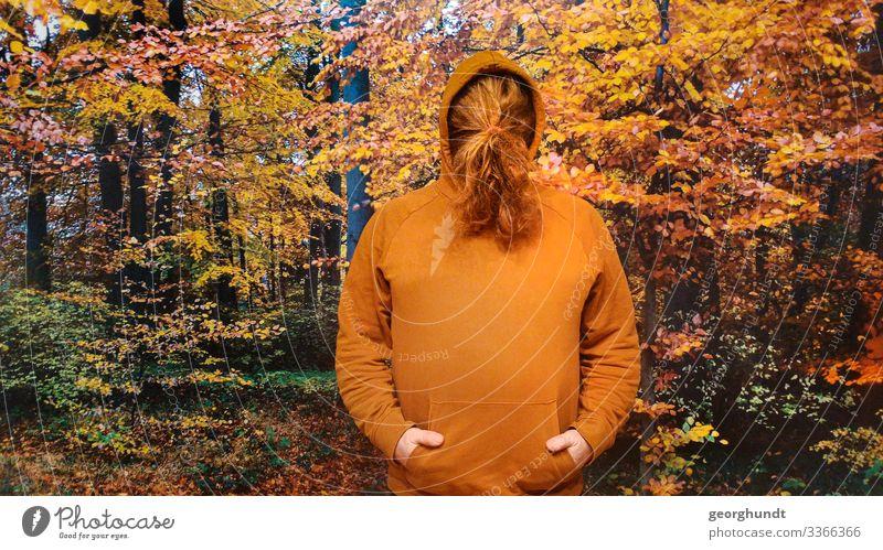 Mann hat seine langen roten Haare vor seinem Gesicht zu einem Zopf gebunden. Er hat einen braunorangen Kaputzenpullover an und steht vor einem großen Foto eines Herbstwaldes.