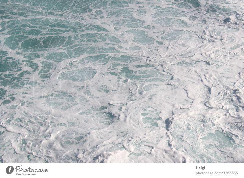 tosendes Meer mit Schaumbildung im Atlantik Umwelt Natur Wasser Insel Teneriffa Bewegung nass natürlich blau weiß bizarr Wandel & Veränderung Gischt Strömung