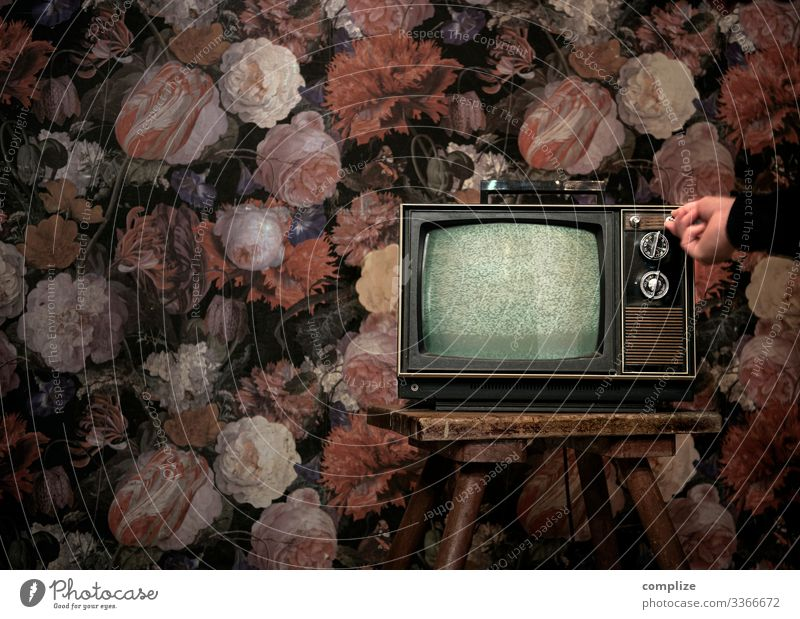 70er Jahre Fernseher vor Vintage Blumentapete Hand sprechen Innenarchitektur Stil Häusliches Leben Design Wohnung Raum Technik & Technologie Arme Finger