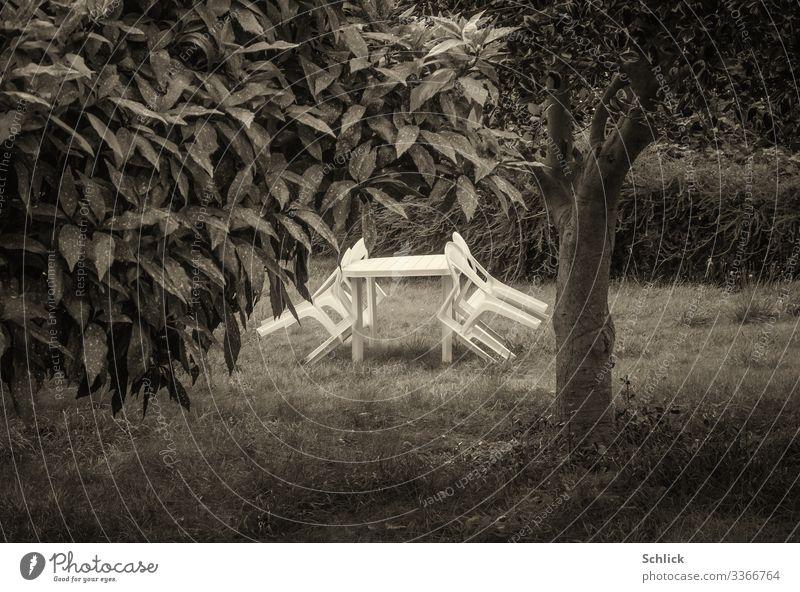 Gartenstühle aus weißem Kunstoff angelehnt an Tisch auf Wiese mit Baum in schwarzweiß Essen trinken Erholung Gartenmöbel Gartenstuhl Gartentisch Stuhl Idylle