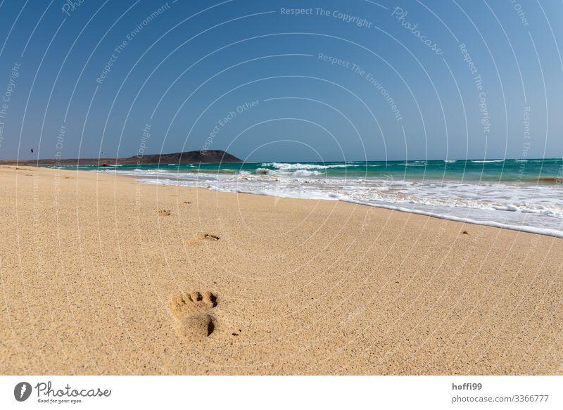 Spurensuche exotisch Sommer Sommerurlaub Sonne Strand Meer Insel Wellen Natur Landschaft Schönes Wetter Küste Wüste Schwimmen & Baden Bewegung Erholung laufen
