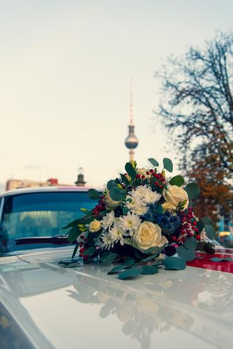 Berliner Blumen mit Türmchen Lifestyle Hochzeit Wolkenloser Himmel Schönes Wetter Pflanze Hauptstadt Wahrzeichen Berliner Fernsehturm Fahrzeug Oldtimer