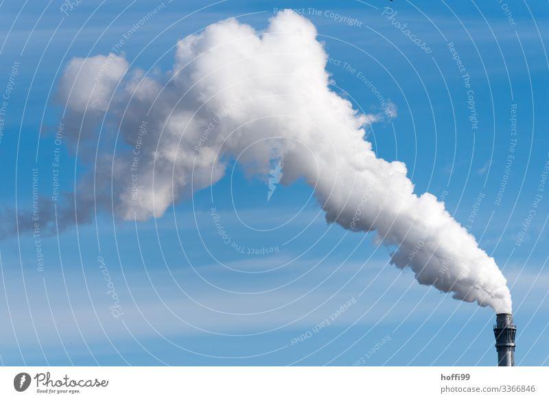 Dampf ablassen Energiewirtschaft Kohlekraftwerk Industrieanlage Fabrik Schornstein Wasserdampf Abgas Emission authentisch bedrohlich dreckig groß heiß hell