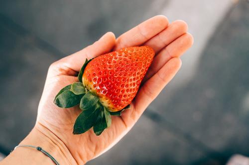 Die Riesenerdbeere Hand lecker haltend Erdbeeren rot Gesunde Ernährung Frucht Gesundheit knallig sommerlich groß frisch Retro-Farben Lebensmittel