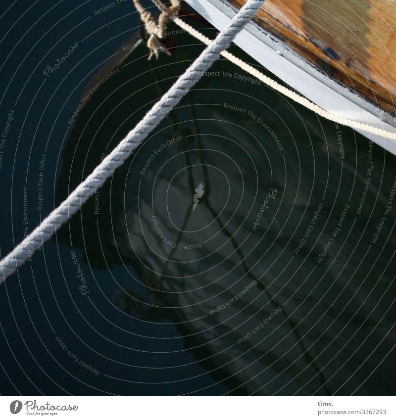 kein Entkommen | Seilschaft lebendig schönes wetter seil wasser still maritim nass boot schiffahrt spiegelung hafen ankern festgemacht ostsee sonnenlicht holz