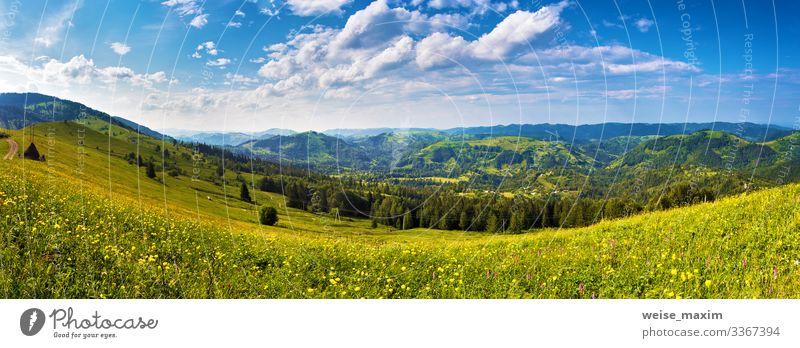 Sonniger Tag Panorama der Bergwiese Sommer Berge Sonnenlicht-Wolken Wiese Ökologie Hügel Tal Straße malerisch Licht Landschaft grün Dorf ländlich Reise Frühling