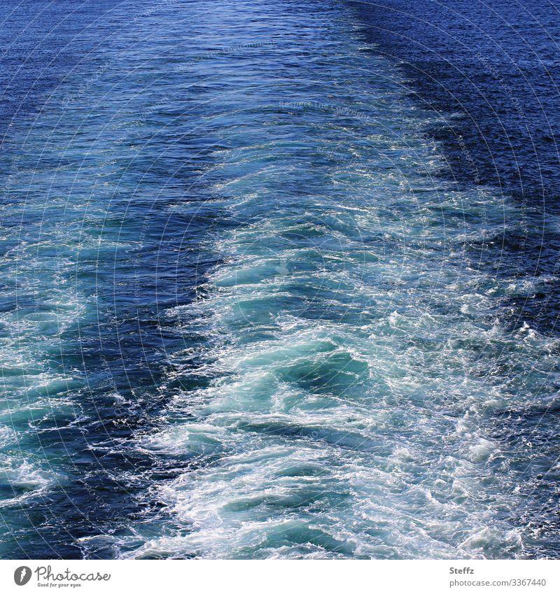 Kielwasser Umwelt Natur Urelemente Wasser Meer maritim blau weiß Fernweh Urlaubsstimmung Meeresstimmung Bewegung Geschwindigkeit Ferien & Urlaub & Reisen