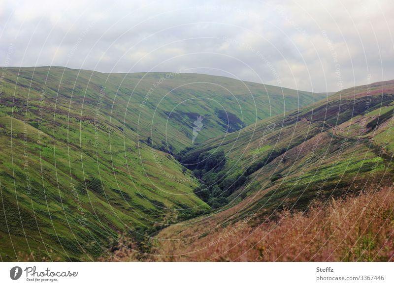 Schottische Hügel Schottland schottisch Tal Sommer in Schottland Klima Wolken Ruhe Stille Moos Großbritannien Europa Nordeuropa grün ruhig schottisches Wetter