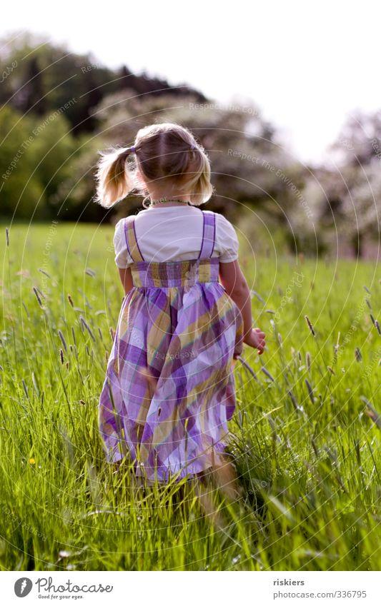 tage, wie diese... feminin Mädchen Kindheit 1 Mensch 3-8 Jahre Umwelt Natur Landschaft Frühling Sommer Schönes Wetter Wiese entdecken gehen frei Freundlichkeit
