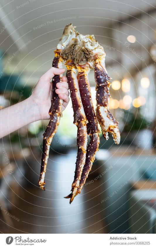 Kropfpflanze mit Königskrebsbeinen Person Königskrabbe Restaurant Bein gekocht zeigen Portion Meeresfrüchte Reichtum Exquisit Kellner manifestieren