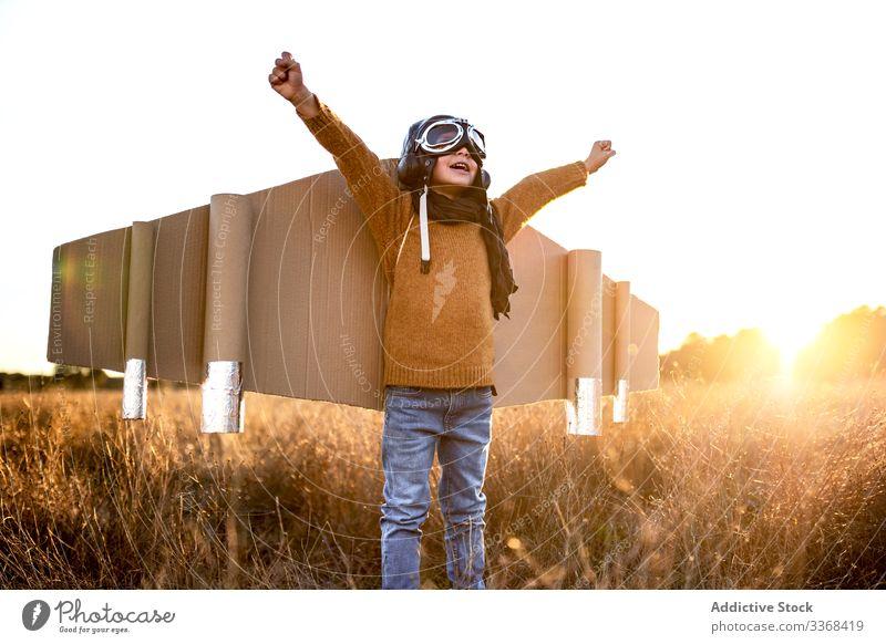 Fröhlicher kleiner Junge beim Fliegerspiel auf dem Land spielen träumen Spiel Landschaft Kind Schutzbrille Flügel Karton männlich Tracht Sohn Kindheit