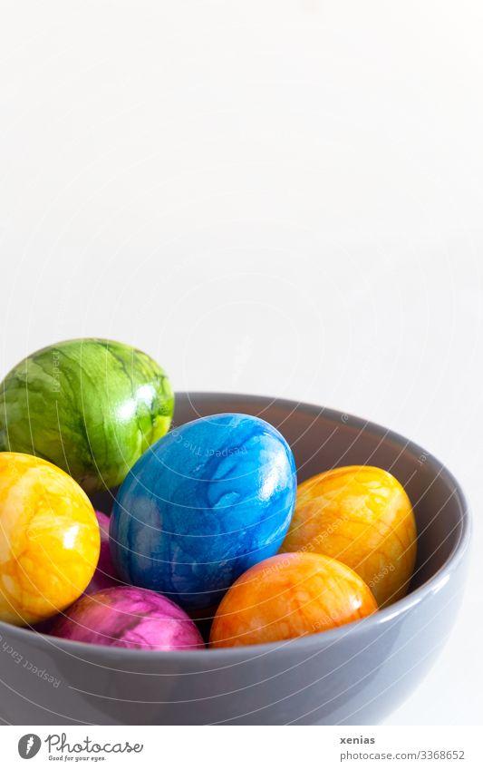 bunte Ostereier in grauer Schale vor weißem Hintergrund ostereier Lebensmittel Ei Ernährung Frühstück Büffet Brunch Bioprodukte Vegetarische Ernährung Fasten