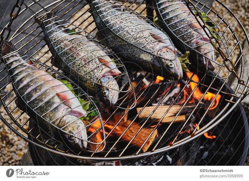 Lecker Fisch Natur Feuer Wasser Garten Grill Holz Rauch Duft Essen fangen Gesundheit lecker natürlich saftig silber Reinheit Angeln Forelle Farbfoto