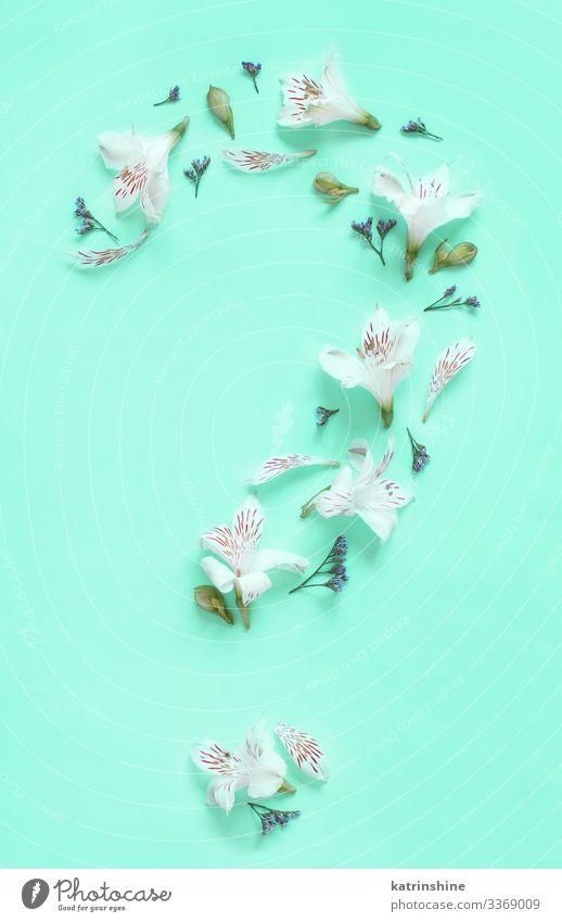 Fragezeichen aus Blumen auf hellgrünem Hintergrund Design Dekoration & Verzierung Hochzeit Frau Erwachsene Mutter oben weiß Kreativität Fragen Fragestellung