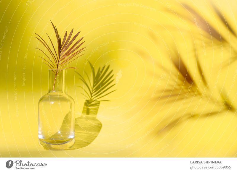 Goldenes Palmenblatt in Glasvase auf gelbem Hintergrund. elegant Stil Design exotisch schön Sommer Dekoration & Verzierung Tisch Tapete Natur Pflanze Baum Blume