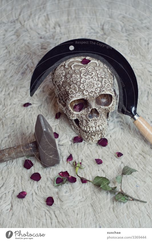 totenkopf mit sichel und rosenblätter auf flokati Schädel Tod Skelett Totenkopf gruselig Gewalt Politik Revolution Fotochallenge unheimlich Halloween Waffe