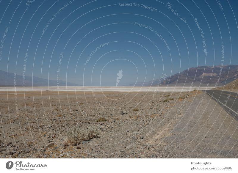 Death Valley - USA Ferien & Urlaub & Reisen Ferne Umwelt Natur Landschaft Tier Erde Sand Himmel Wolkenloser Himmel Horizont Klima Wärme Dürre Wüste Mojave