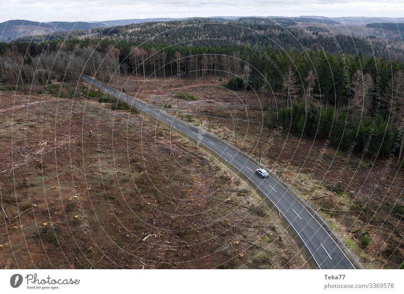 #Auto auf Straße von Oben im Waldland Winter Umwelt Natur Landschaft Pflanze Verkehr Verkehrsmittel Verkehrswege Autofahren Fahrzeug PKW ästhetisch Farbfoto
