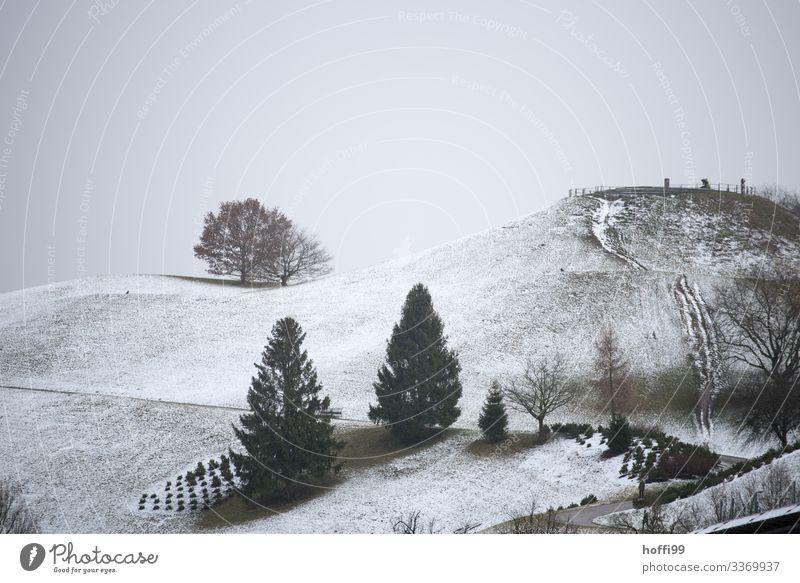 winterlich hügelige Parklandschaft mit Bäumen in exponierter Lage Landschaft Wolken Winter Wetter schlechtes Wetter Nebel Schnee Baum Hügel ästhetisch dunkel