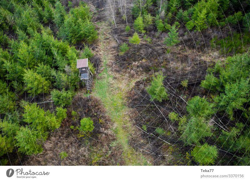 #Hochsitz im Wald von Oben Winter Umwelt Natur Landschaft Feld ästhetisch Jagd Tier Luftaufnahme Farbfoto Außenaufnahme