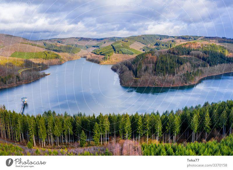 #Das Rothaargebirge Winter Umwelt Natur Landschaft Pflanze Wald Hügel Berge u. Gebirge Seeufer ästhetisch Sauerland Siegerland obernau Farbfoto Außenaufnahme