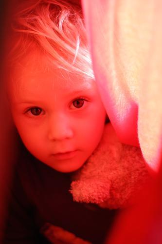 Augen sind das Tor zur Seele Kindererziehung Mensch Kleinkind Junge Kindheit 1 3-8 Jahre blond Teddybär Blick nah natürlich Neugier Gefühle Vertrauen