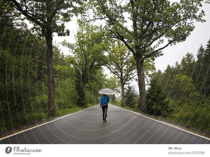 Junge Frau geht auf der Landstraße spazieren Straße Allee Spazieren gehen Regenschirm Einsamkeit Wege & Pfade Landschaft Verkehrswege Umwelt Asphalt Herbst