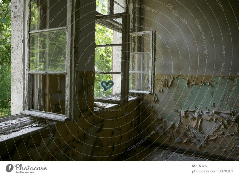 lüften mit Herz Haus Ruine Altbau Fenster geöffnet Ausblick frische Luft Tapete Zimmer Wohnung Holzfenster Garten gelb kaputt Lost Places vergänglichkeit offen