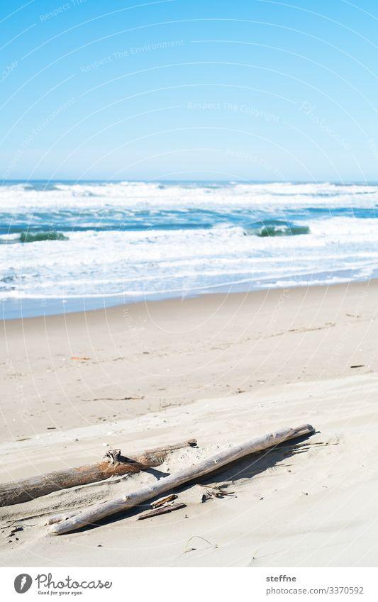 Meeresstrand mit Baumstamm im Vordergrund Natur Landschaft Schönes Wetter wild Sand Ferien & Urlaub & Reisen rau Oregon Farbfoto Gedeckte Farben Außenaufnahme