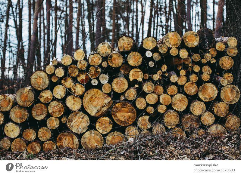 Holzstapel Brennholz Forstwirtschaft Langholz Forstarbeit Holzverarbeitung